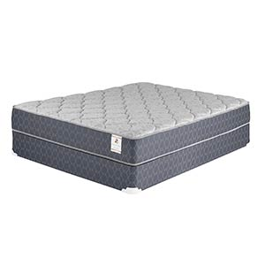 Sterling & Thomas Singleton Premium Plush Queen Mattress and Foundation